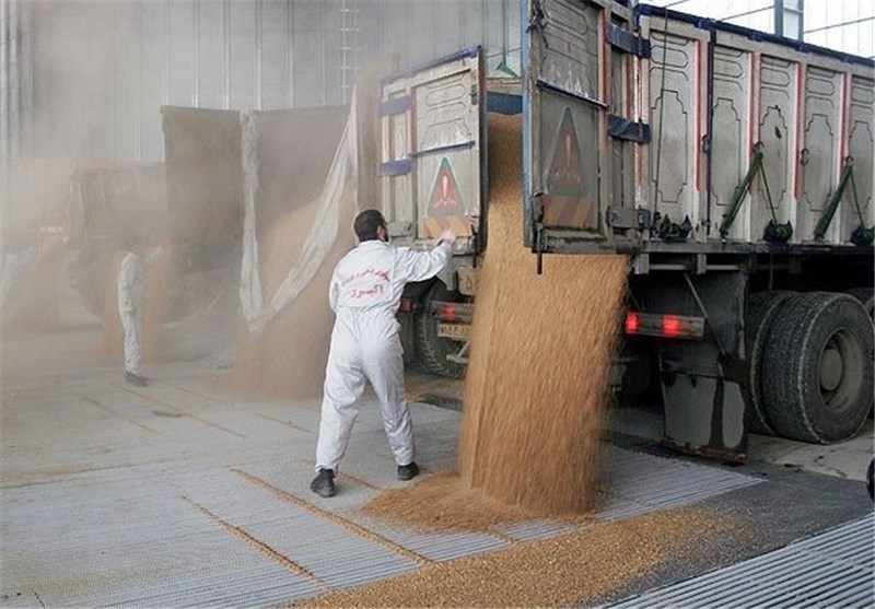 Image result for گندم خریداری